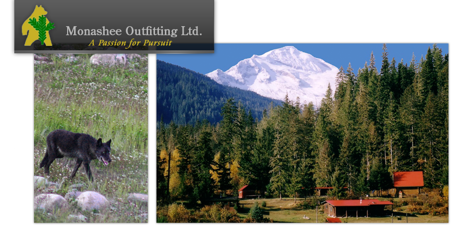 Monashee Outfitting Ltd.  - Contact