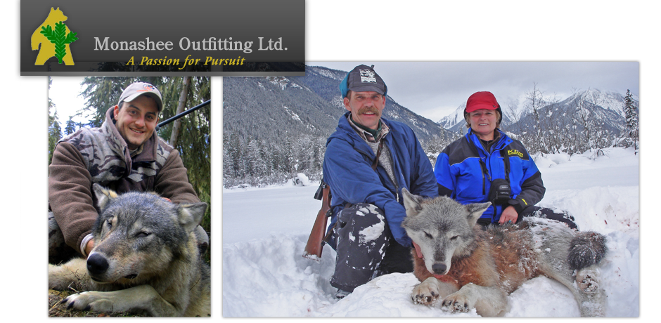 Monashee Outfitting Ltd.  - Wolves